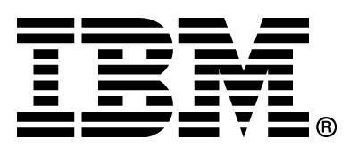 IBM Italia SpA