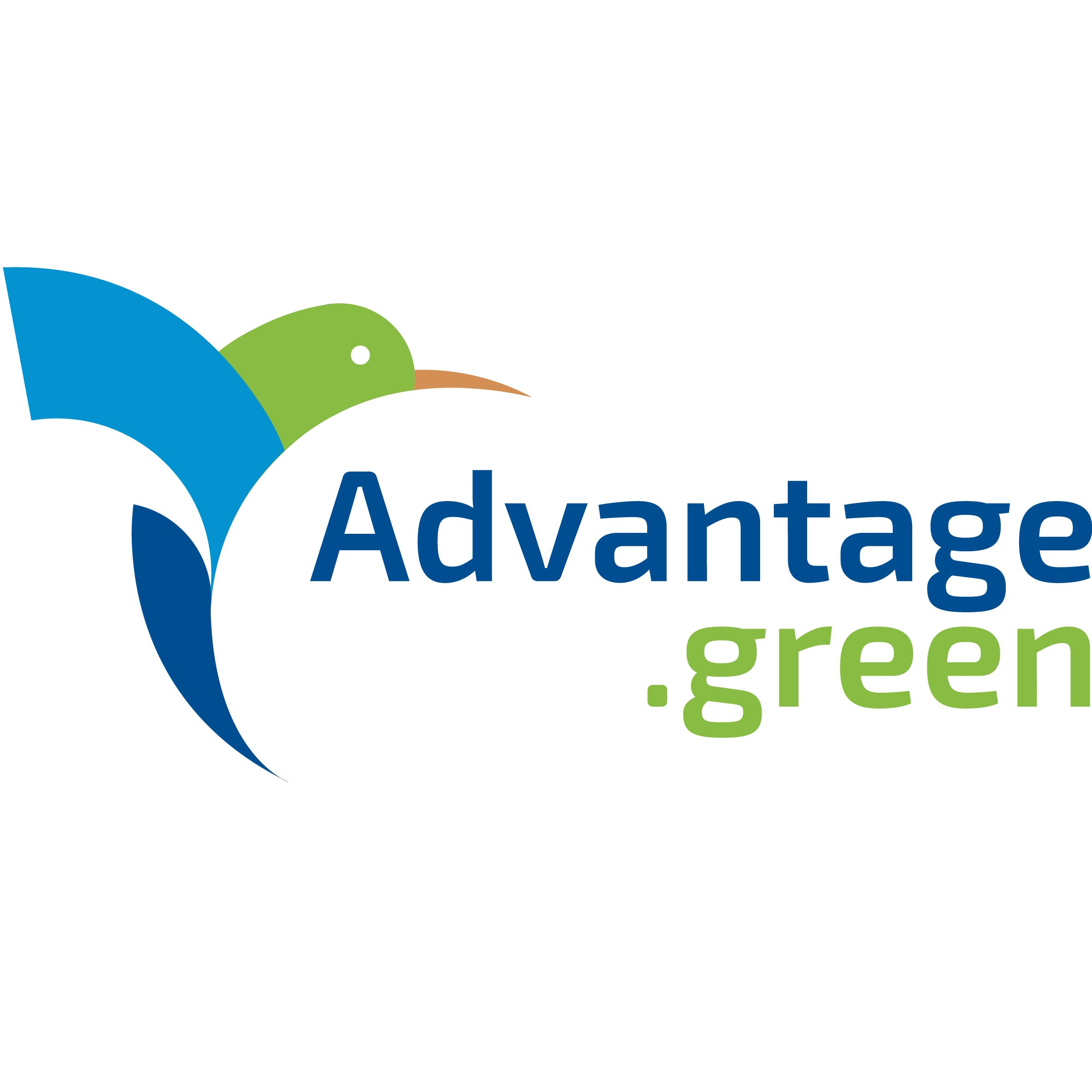 ADVANTAGE.GREEN SRL
