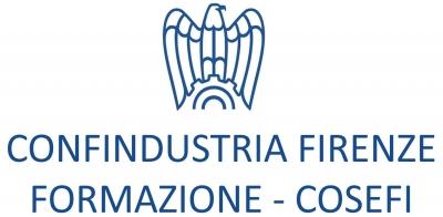 Confindustria Firenze Formazione - COSEFI