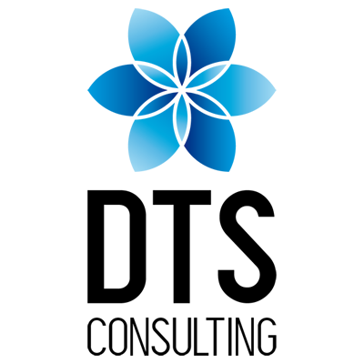 DTS CONSULTING SRL