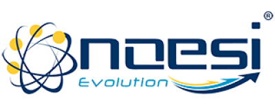 Noesi Evolution s.r.l. unipersonale