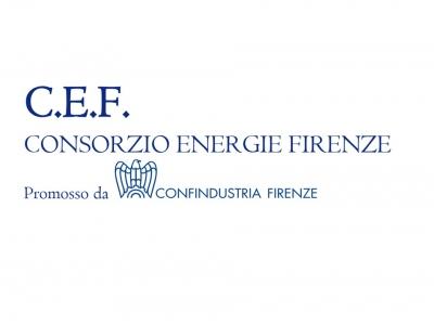 CONSORZIO ENERGIE FIRENZE